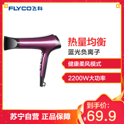 飞科(FLYCO)电吹风 FH6273 六档变速调控负离子护发健康柔风2200W家用吹风机