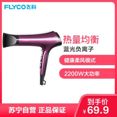 飛科(FLYCO)電吹風 FH6273 六檔變速調控負離子護發健康柔風2200W家用吹風機