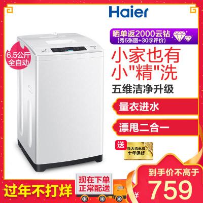 海尔(Haier)EB65M019 6.5公斤 家用全自动小神童波轮洗衣机 小洗衣机 宽水压宽电压设计非变频
