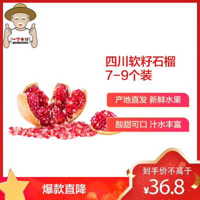 【一賢生鮮】西沛四川大涼山突尼斯軟籽石榴 凈重5斤中果(7-9個左右)國產新鮮采摘 水果