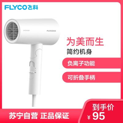 飛科 FLYCO 電吹風FH6276 1800W大功率負離子雙重防過熱保護健康柔風六檔變速控溫可折疊家用吹風機