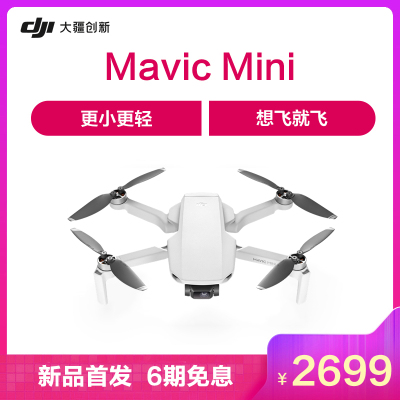 DJI 大疆 御 Mavic Mini 航拍小飛機