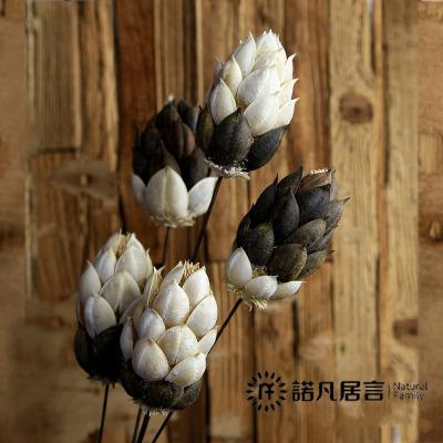諾凡新品鴛鴦花裝飾仿真干花假花束創意真花插花客廳歐式田園擺件