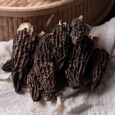 珍贵膳 羊肚菌新鲜野生菌羊肚子135g云南特产特级菇蘑菇煲汤料