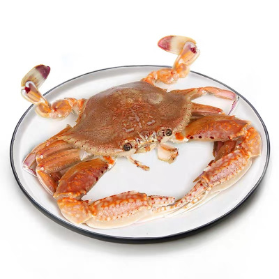 沈志雄 東山島海鮮白梭子蟹肉蟹扁蟹螃蟹活凍后寄2-4只/斤