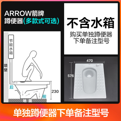 ARROW箭牌ALD507蹲便器陶瓷蹲坑廁所便池防臭大便器水箱套裝!