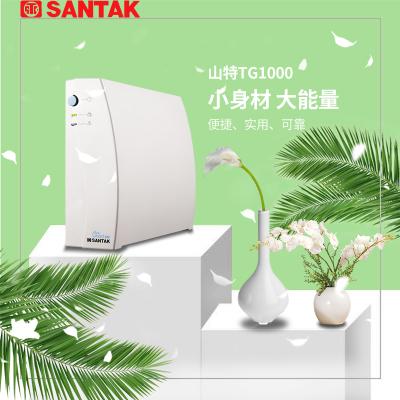 山特 UPS不间断电源 /SANTAK TG1000/600W 静音带2台电脑续航10分钟