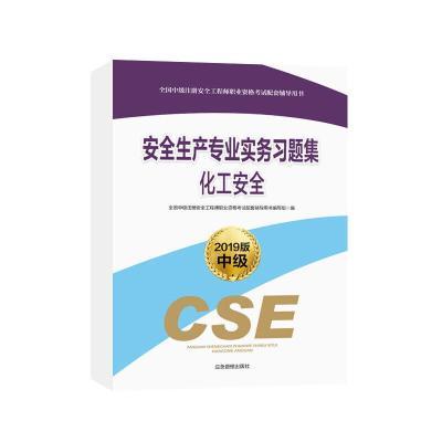 安全生產專業實務習題集:2019版:化工安全全國中級注冊安全工程師