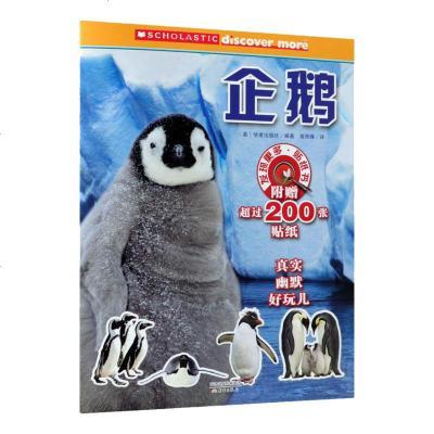 正版 發現更多貼紙書企鵝幼兒園老師推薦2-3-6歲寶寶提高認知能力睡前故事中國兒童文學讀物幼兒繪本故事書兒童閱讀小百
