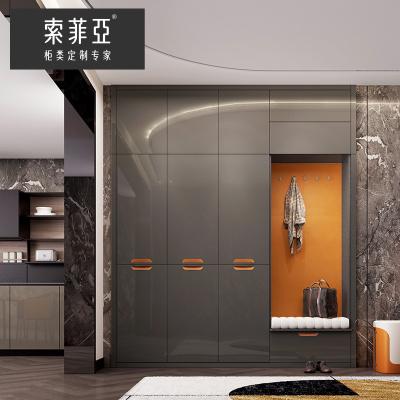 索菲亞玄關柜定制現代輕奢進門入戶柜大容量鞋柜入墻式收納柜家具