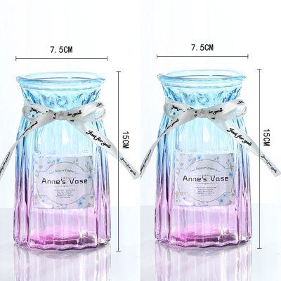 恬豆【歐式玻璃花瓶*2+絲帶】歐式創意玻璃花瓶水培綠蘿植物干鮮花插花瓶餐廳客廳裝飾擺件