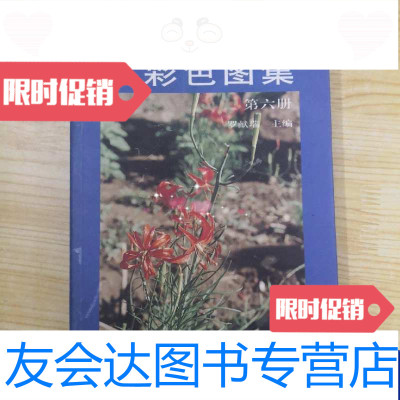【二手9成新】實用中草藥彩色圖集(第6冊) 9787506246170