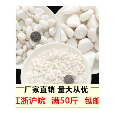 ,小白石子大鵝卵石多肉鋪面白色石頭花盆庭院裝飾鵝暖石盆栽鵝軟石