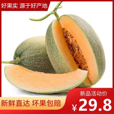 【靚果匯】新鮮現摘哈密瓜水果網紋瓜5/9斤 皮薄肉厚 脆甜多汁