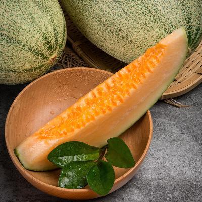 陳小四水果 西州蜜瓜 (帶箱)4.5-5斤 新鮮蜜瓜 新鮮水果 蘇寧生鮮水果