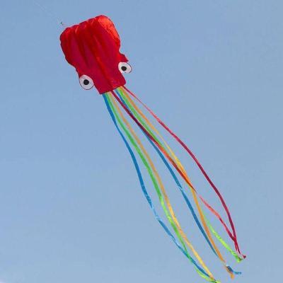 百斯媚濰坊4米軟體章魚風箏八爪魚線輪大型微風易飛成人初學者兒童批發