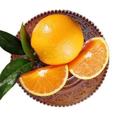 湖北秭歸夏橙 凈重5斤 單果(50-60mm)新鮮甜橙子 當季時令水果新鮮采摘