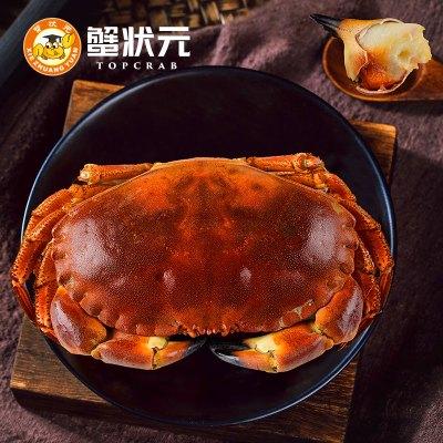 全母买1送1 蟹状元 800g-600g/只 面包蟹黄道蟹熟冻爱尔兰珍宝蟹超大金蟹海鲜水产