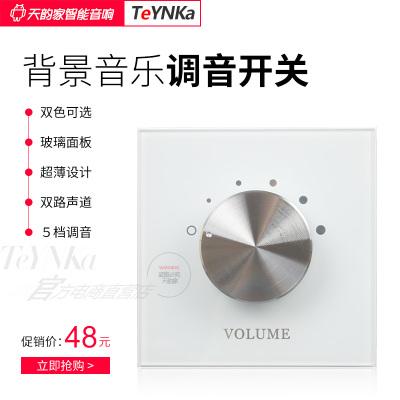 天韻家(TeYNKa) KG05-白色 定阻調音開關86型音量調節面板 雙路兩聲道家庭背景音樂系統套裝 嵌入式主機控制器