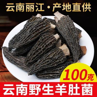云南羊肚菌干货野生100g 非新鲜羊肚菌农家自采羊肚菇食用菌