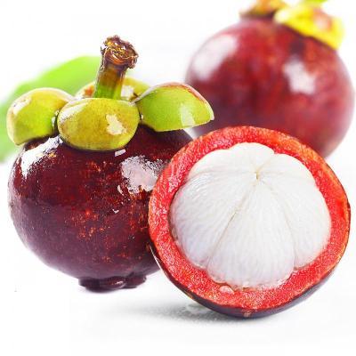 山竹5斤 新鮮水果