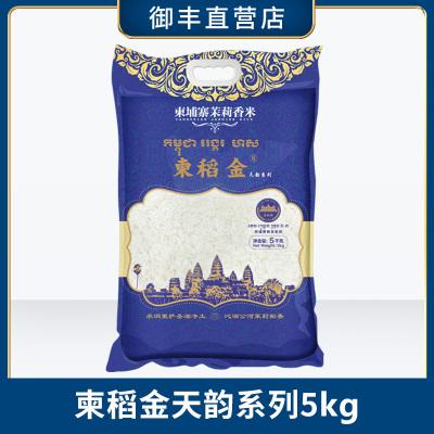 柬稻金 原裝進口 柬埔寨茉莉香米 5KG