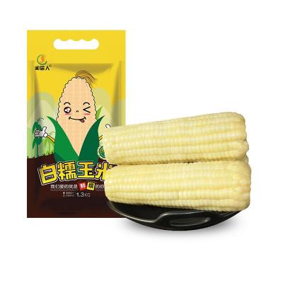 闲居人8支装约1.6kg 白糯玉米棒 真空包装 东北白糯玉米 非转基因