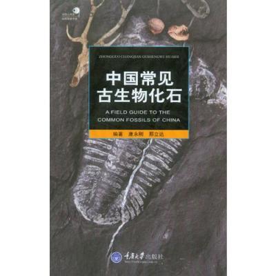中國常見古生物化石