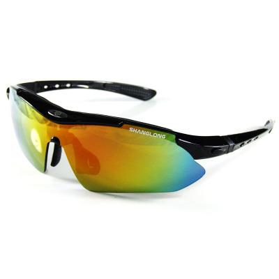 尚龍騎行眼鏡 戶外運動時尚防風鏡 橡膠內襯防護 自行車眼鏡 鏡腿可卸 黑色SL-A07