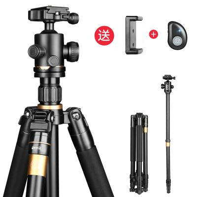轻装时代Q222三脚架 单反相机摄影摄像手机稳定支架 微单便携直播自拍三角架云台套装