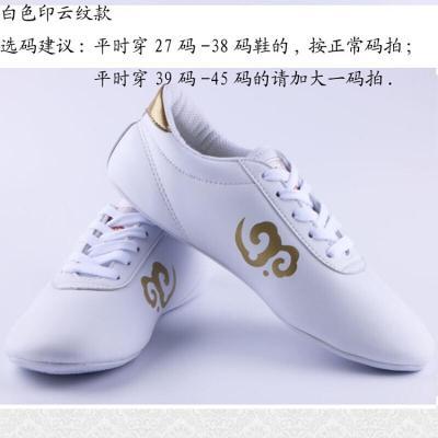 武术鞋太极鞋 跆拳道鞋室内武术鞋练功鞋