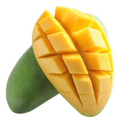 芒果新鲜水果 进口玉芒带箱10斤装优选精品果 鲜果直发 热带水果 新鲜青芒 苏宁生鲜