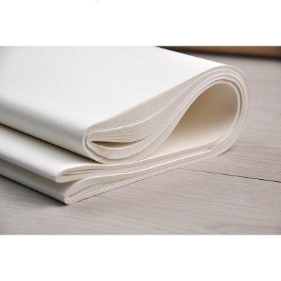 书画纸书法纸书画纸生宣 国画宣纸书法毛笔纸张半生熟 书法用品宣纸 25张对开35*138CM 墨点