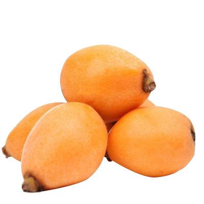 薯家上品 福建云霄枇杷3斤 肉厚多汁 新鮮枇杷當季現摘水果