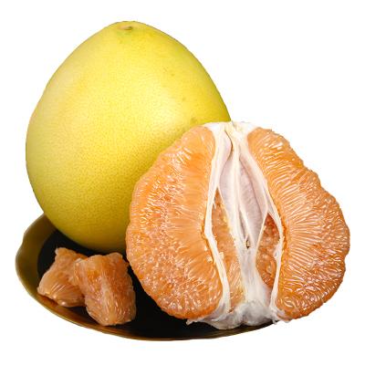 福建琯溪黃金柚1個( 拍2件合并發貨 單果750-1200g)(親多多 國產柑橘)