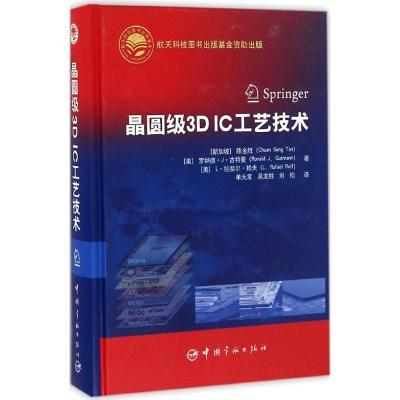 正版 晶圆级3D IC工艺技术 (新加坡)陈全胜(Chuan Seng Tan),(美)罗纳德·J.古特曼(Ronald