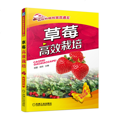 草莓高效栽培 草莓種植技術書籍 草莓病蟲害防治書 現代農業科技圖書 生態農業教程書 大棚培育技術書