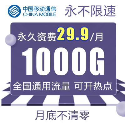 中国移动流量卡4g纯流量卡【29.9元1000g】通用流量公网IP安全稳定0月租流量月底不清零大王卡学生可用免费送