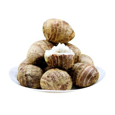 新鮮小芋頭5斤裝 毛芋頭農家新鮮蔬菜 小香芋 芋艿