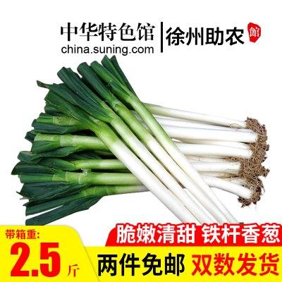 【中華特色】徐州助農館【2件免郵】匯爾康(HR) 新鮮大蔥帶箱2.5斤 時令蔬菜 農家自產 脆嫩清甜 鐵桿香蔥 華東