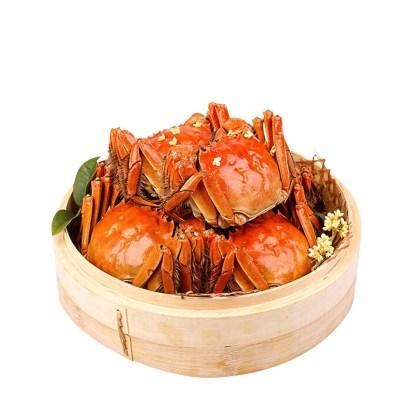 餐中王大闸蟹2.5两8只全母蟹鲜活大闸蟹canzhongwang