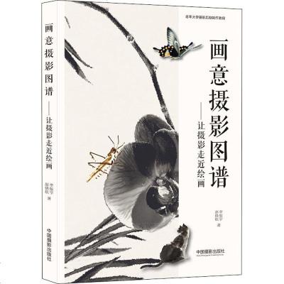 畫意攝影圖譜——讓攝影走進繪畫 李振宇,趙曉航 攝影理論