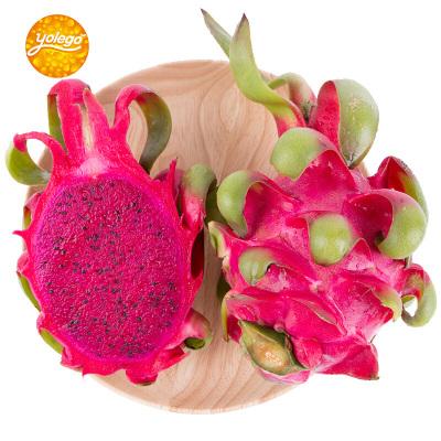 悠乐果 越南红心火龙果6个装 单果约300g-450g 新鲜水果