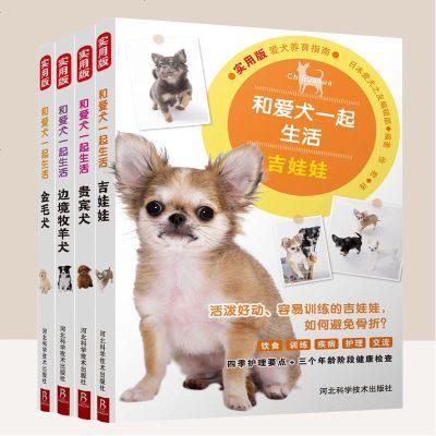 【4本套】和愛犬一起生活:吉娃娃+邊境牧羊犬+貴賓犬+金毛犬 養狗書籍訓練狗狗的教程書狗狗書籍大全養狗訓狗實用新技術