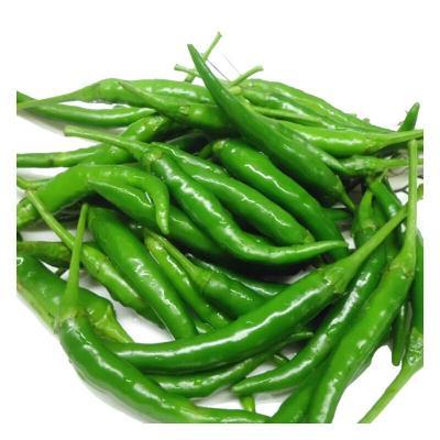 青小米椒5斤 朝天椒指天椒 小辣椒 泡山椒 野山椒 新鲜蔬菜 产发