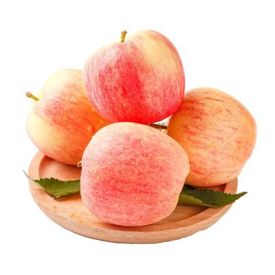 陜西紅富士蘋果 2.5斤 蘋果 冷藏國產蘋果類 新鮮水果 陳小四水果 其他