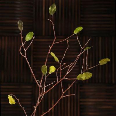 諾凡干枝干花客廳裝飾枯樹枝裝飾樹葉裝飾干樹枝裝飾家居飾品