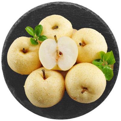 匯爾康(HR) 碭山酥梨帶箱10斤裝 新鮮現摘梨子鴨梨新鮮水果 蘇寧生鮮 壞果包賠