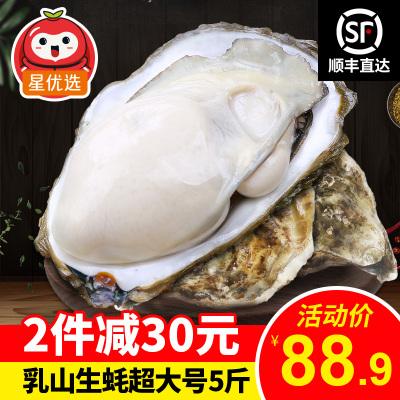 【順豐發貨】鮮活威海乳山生蠔精品超大號5斤裝 單個150-200g 12-16只 牡蠣海蠣子 生鮮貝類海鮮水產