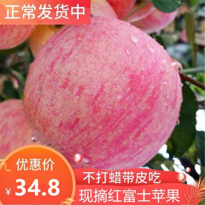 新鮮現摘紅富士10斤裝 單果75-85mm 脆甜大蘋果 蘇寧生鮮水果